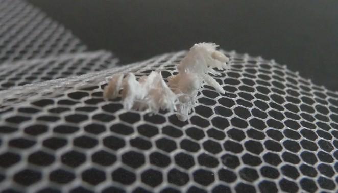 Chrystal fabric test 4 - in tule fabric