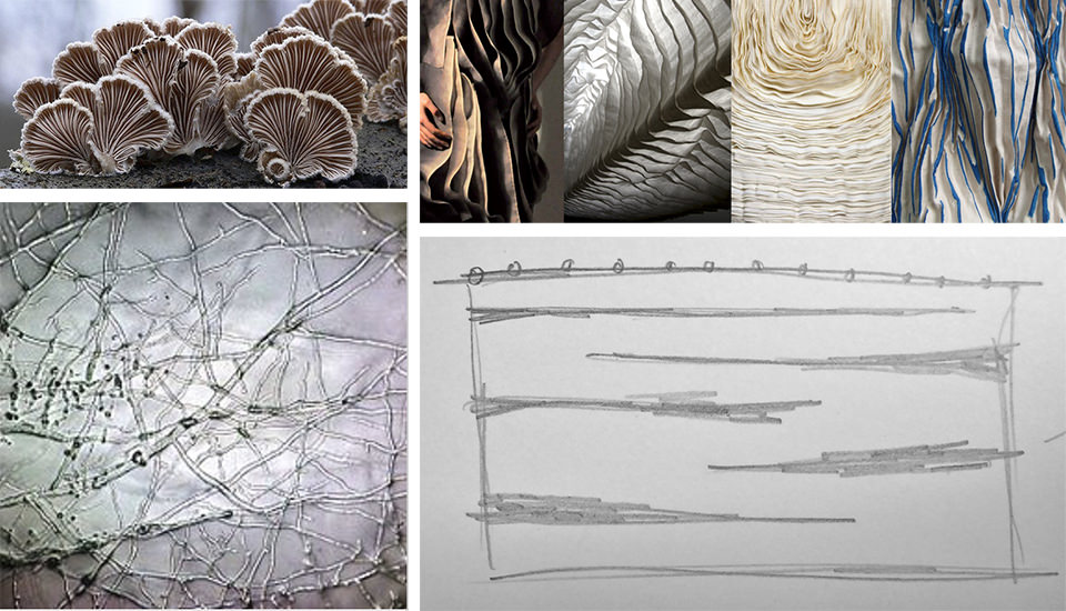 Mycelium textile proposal