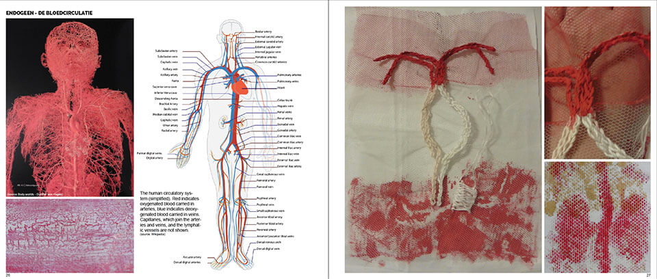Blood circulation cape